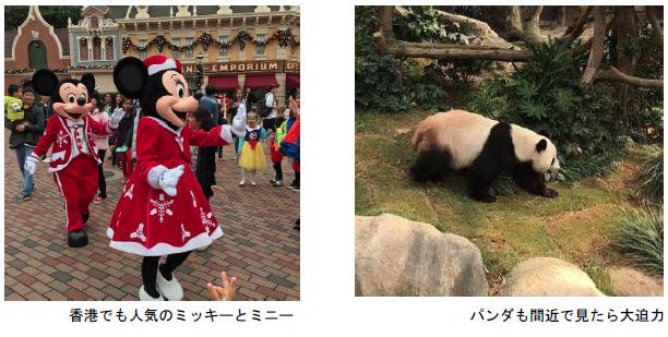 香港でも人気のミッキーとミニーの写真とパンダの写真