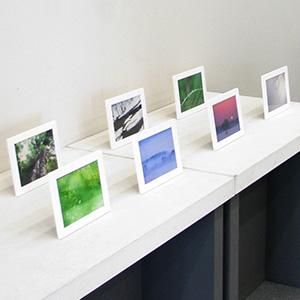 フォトグラファーの日々の仕事~「写真のちから」写真2